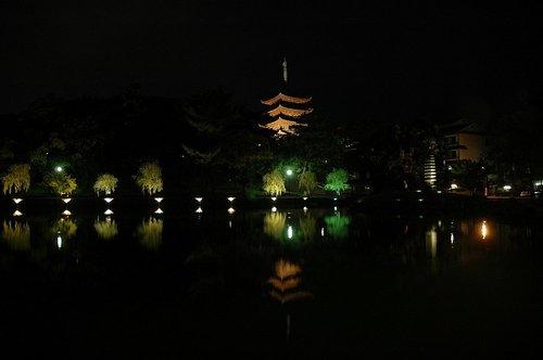 奈良夜07.JPG