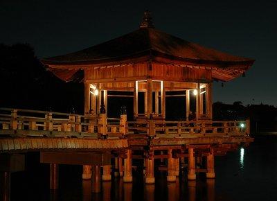 Nara_LUP02.JPG